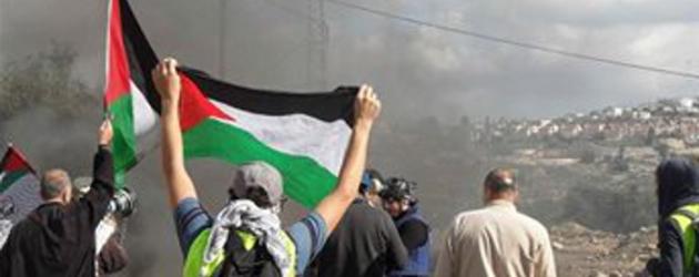 Wolontariat w Palestynie
